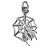 Spider in Web Charm | Charmarama