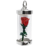 Red Rose Charm
