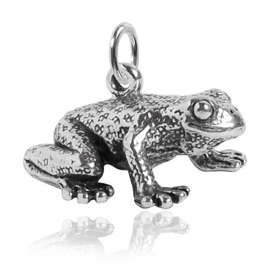 Sterling Silver Frog Charm | Silver Star Charms