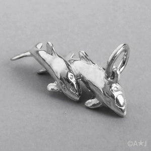 Pair of Dolphins Charm
