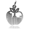 New York NYC Big Apple Charm