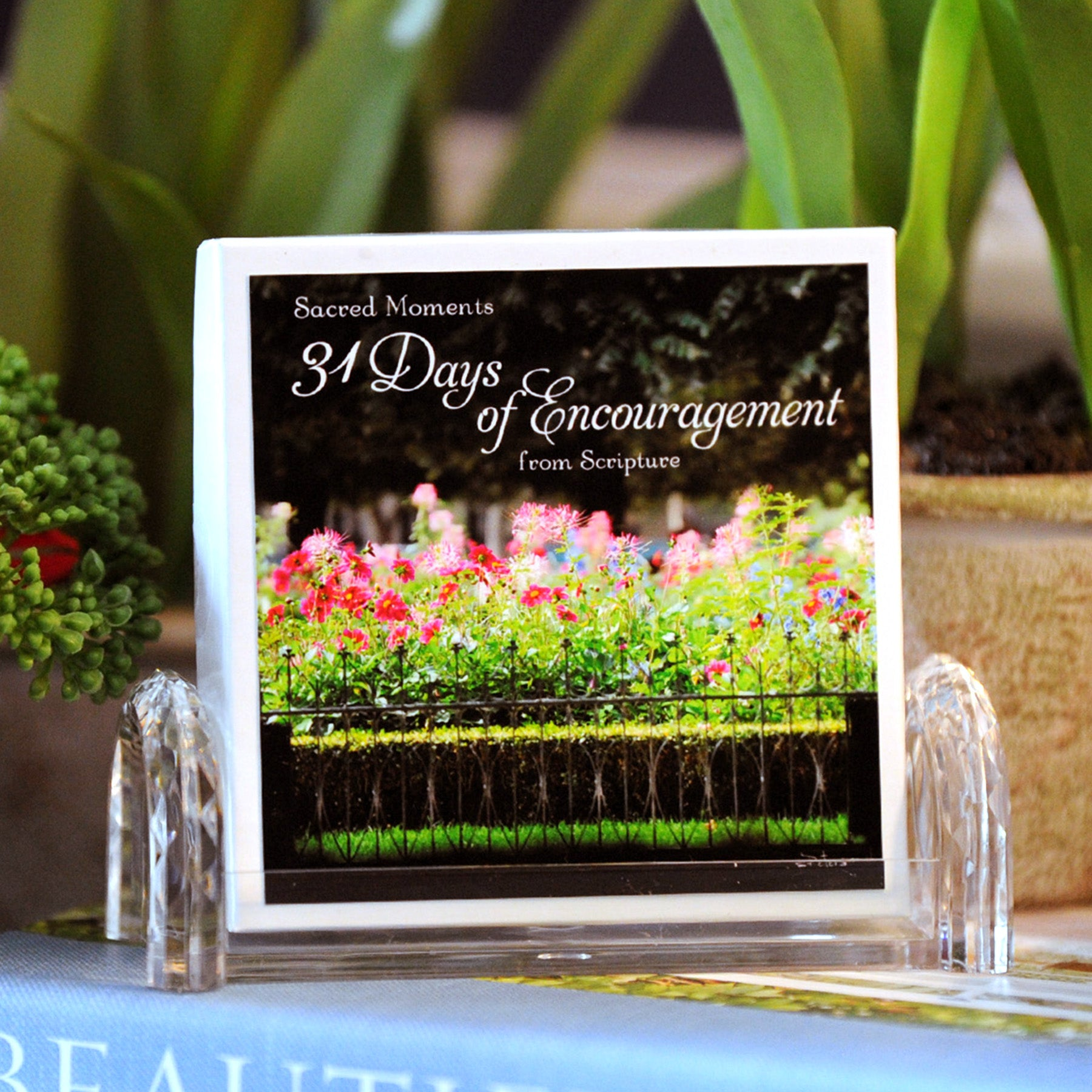 31 Days of Encouragement Boxed Mini Print Collection with Acrylic Holder