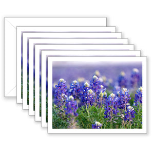 Blue Abundance Boxed Notecard Collection