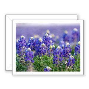 Blue Abundance Notecard