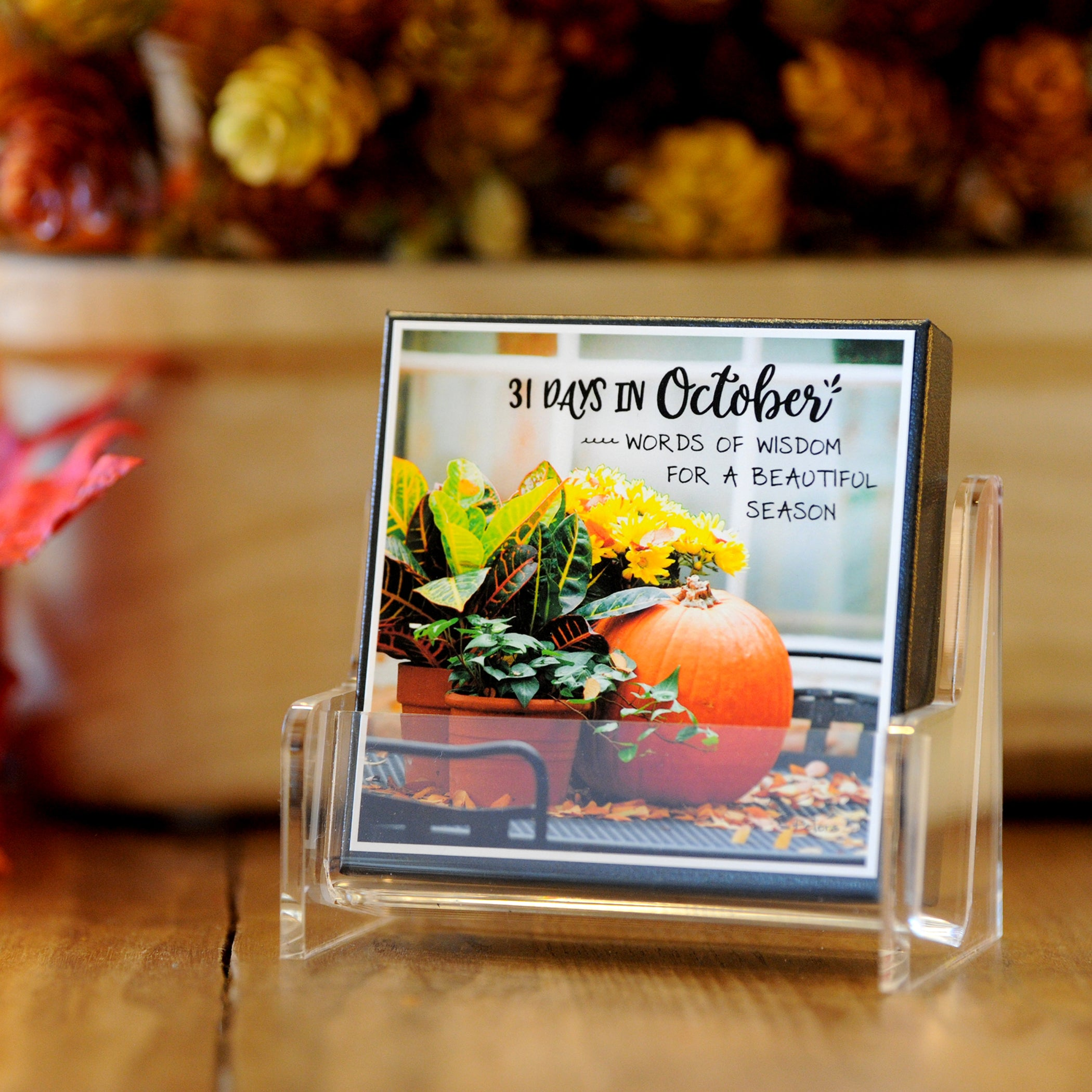 31 Days in October Boxed Mini Print Collection with Acrylic Holder