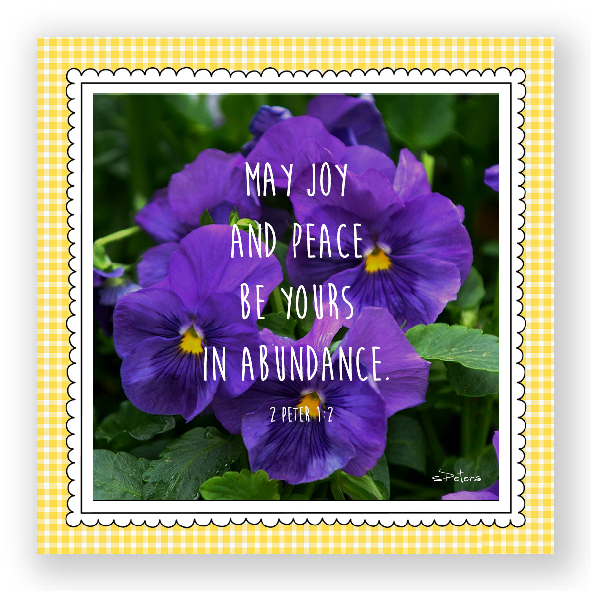 Purple Pansies - Mini Print
