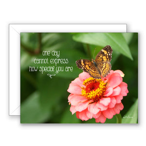 Georgia Butterfly - Birthday Card