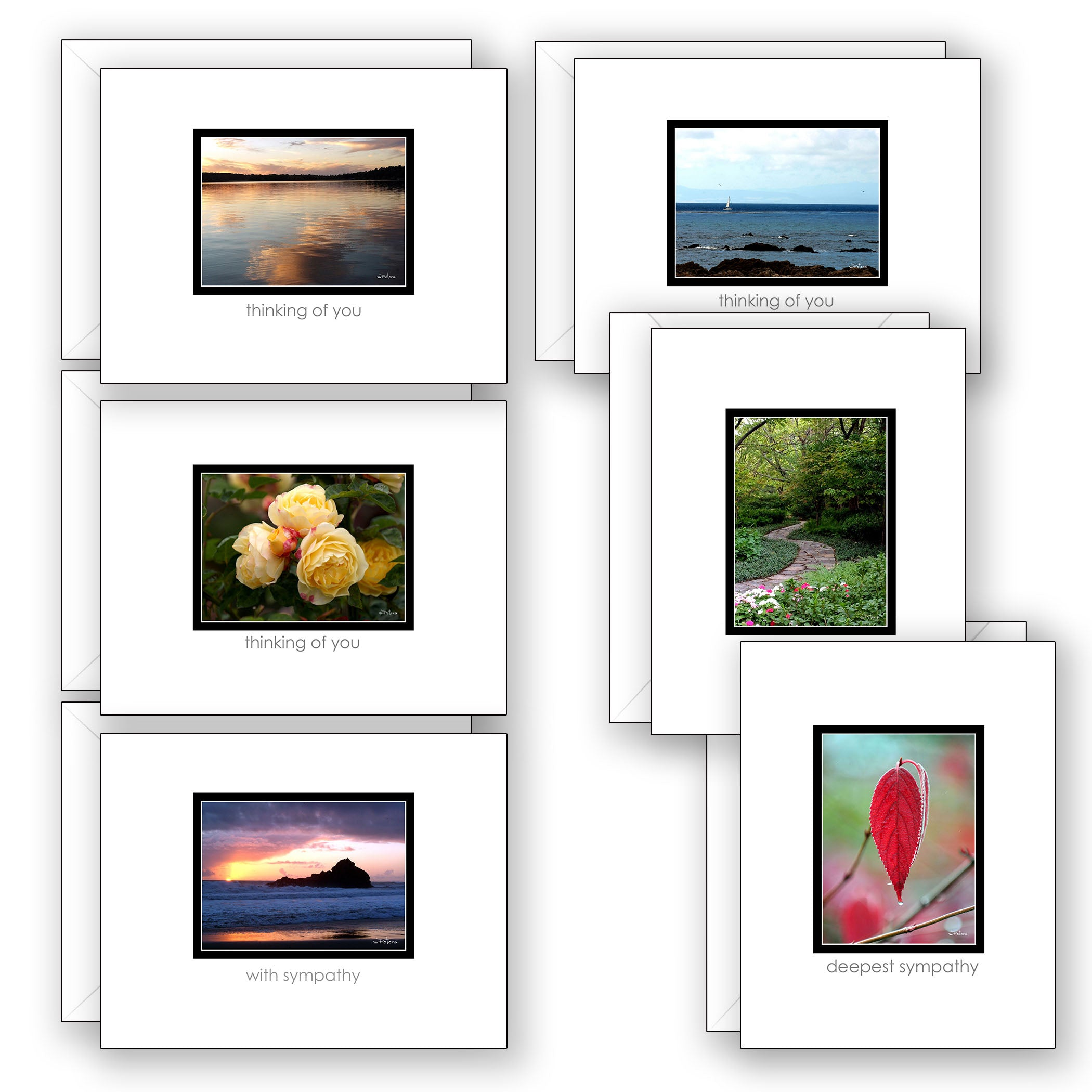 Mini Moments Sympathy - Boxed Notecard Collection