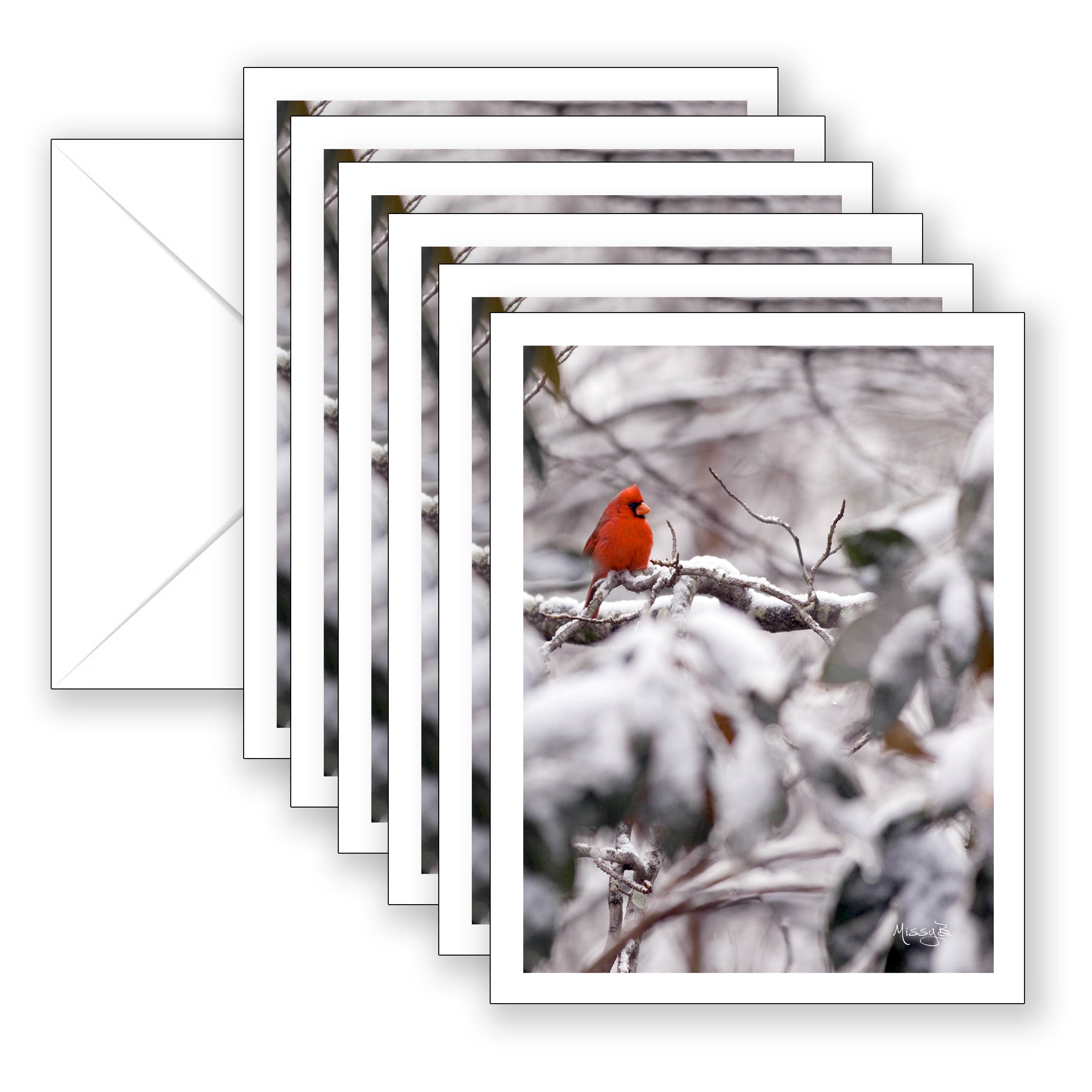 Missy's Red Bird Boxed Notecard Collection