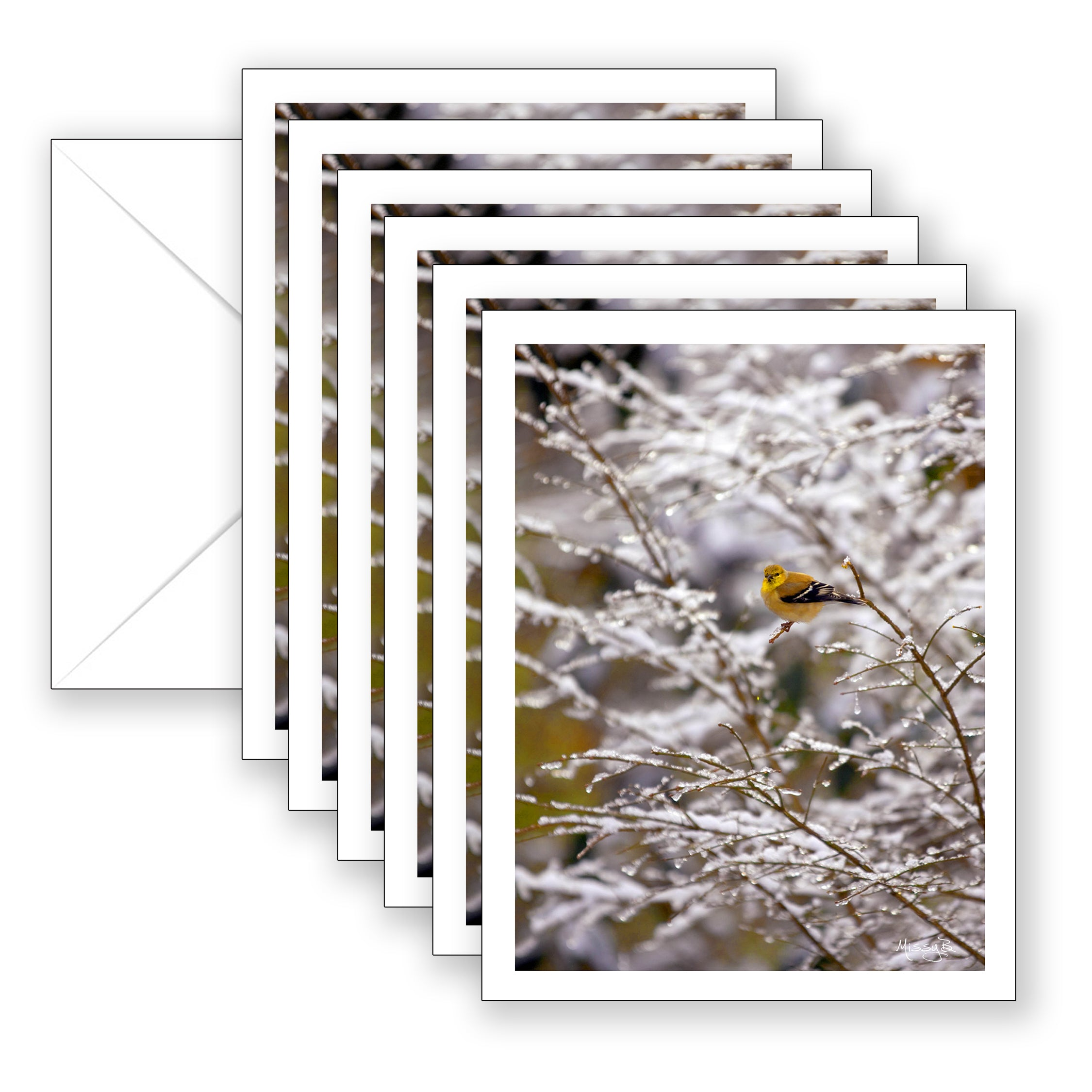 Missy's Yellow Bird Boxed Notecard Collection