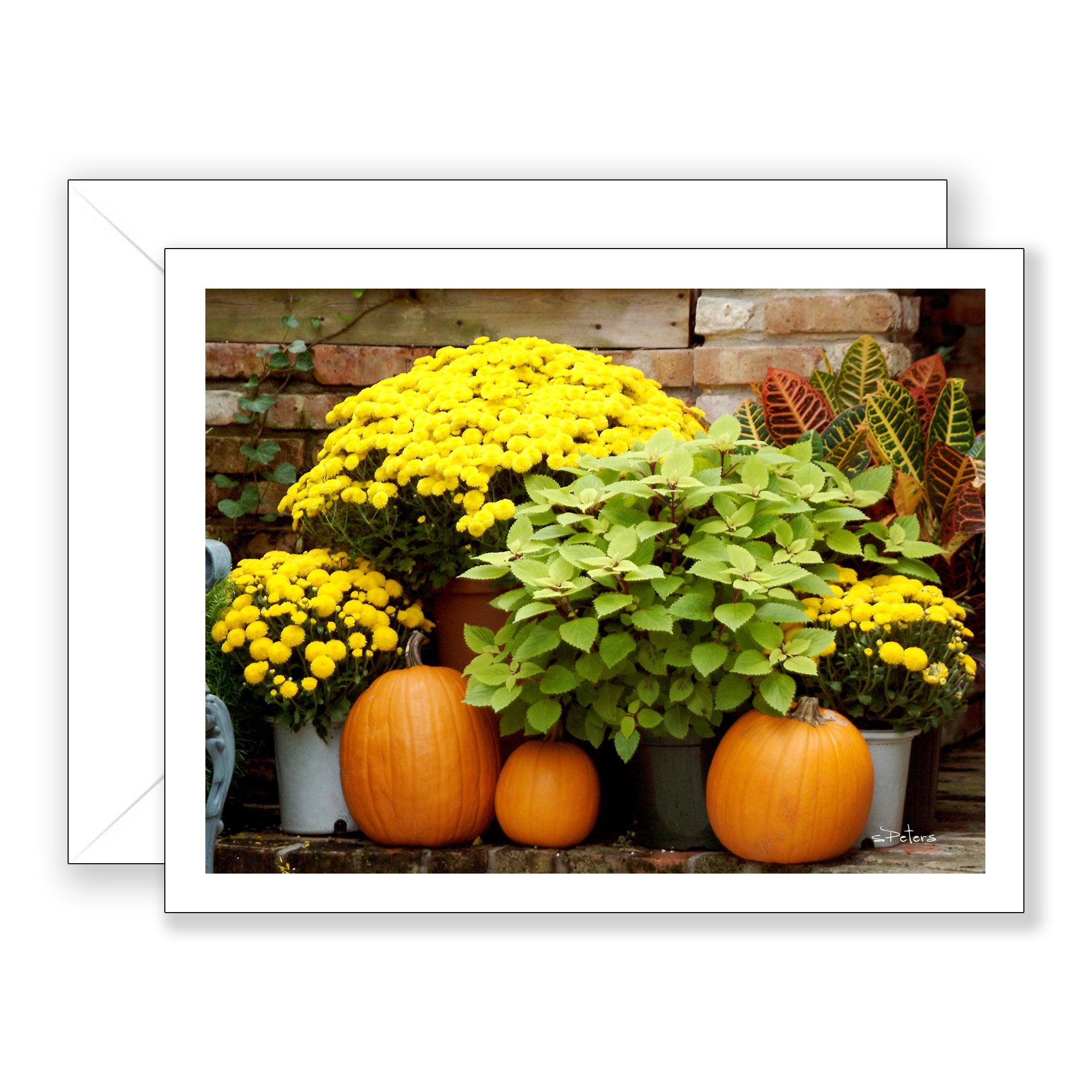 Mums and Pumpkins Notecard
