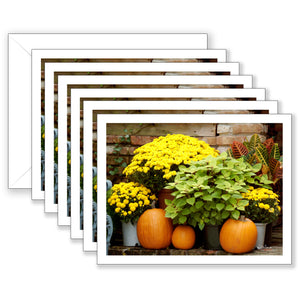 Mums and Pumpkins Boxed Notecard Collection