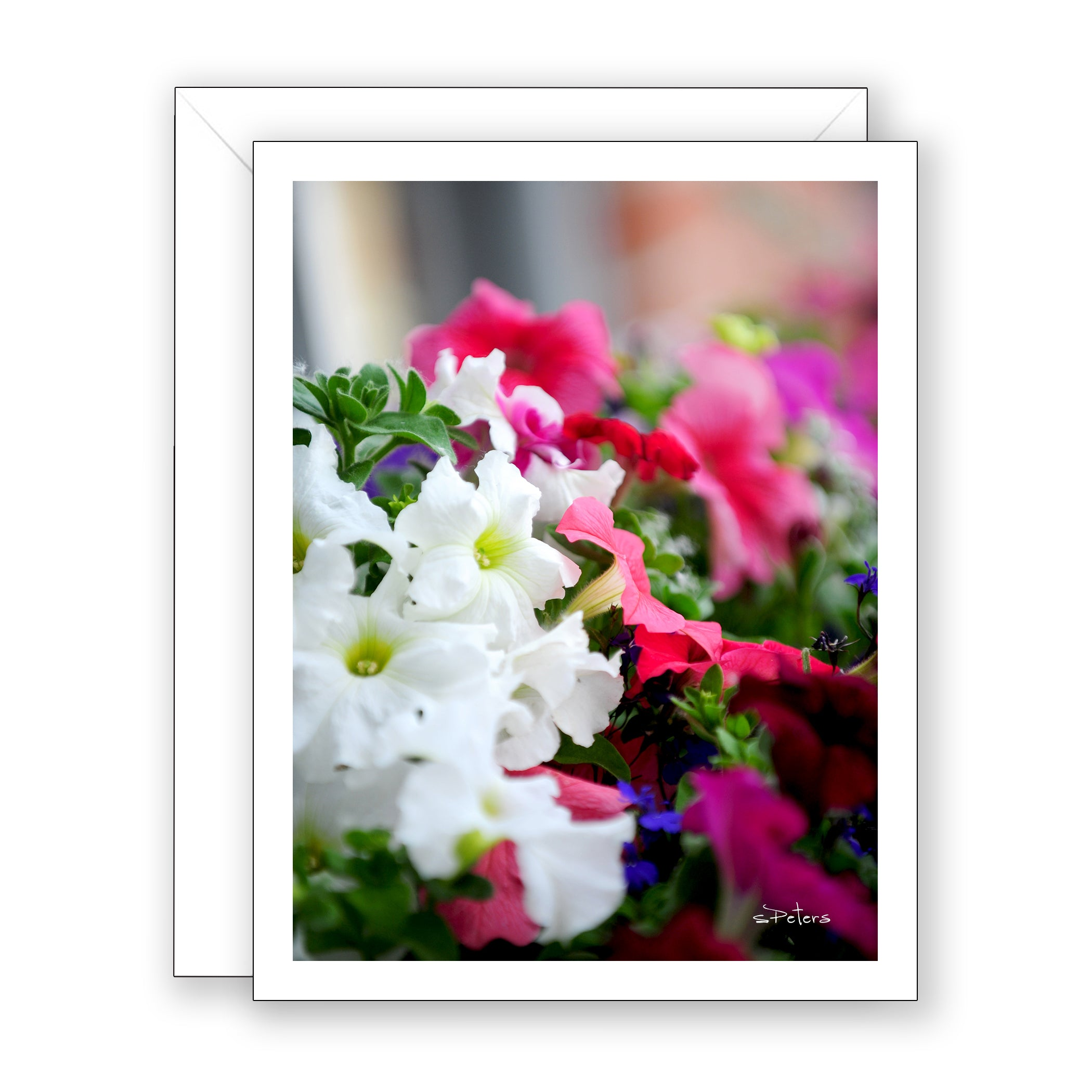 Pretty Petunias Blank Notecard
