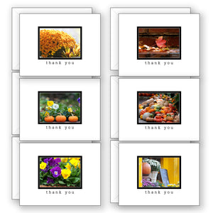 Thankfully Yours for Fall - Boxed Notecard Collection