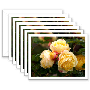 Victoria Boxed Notecard Collection
