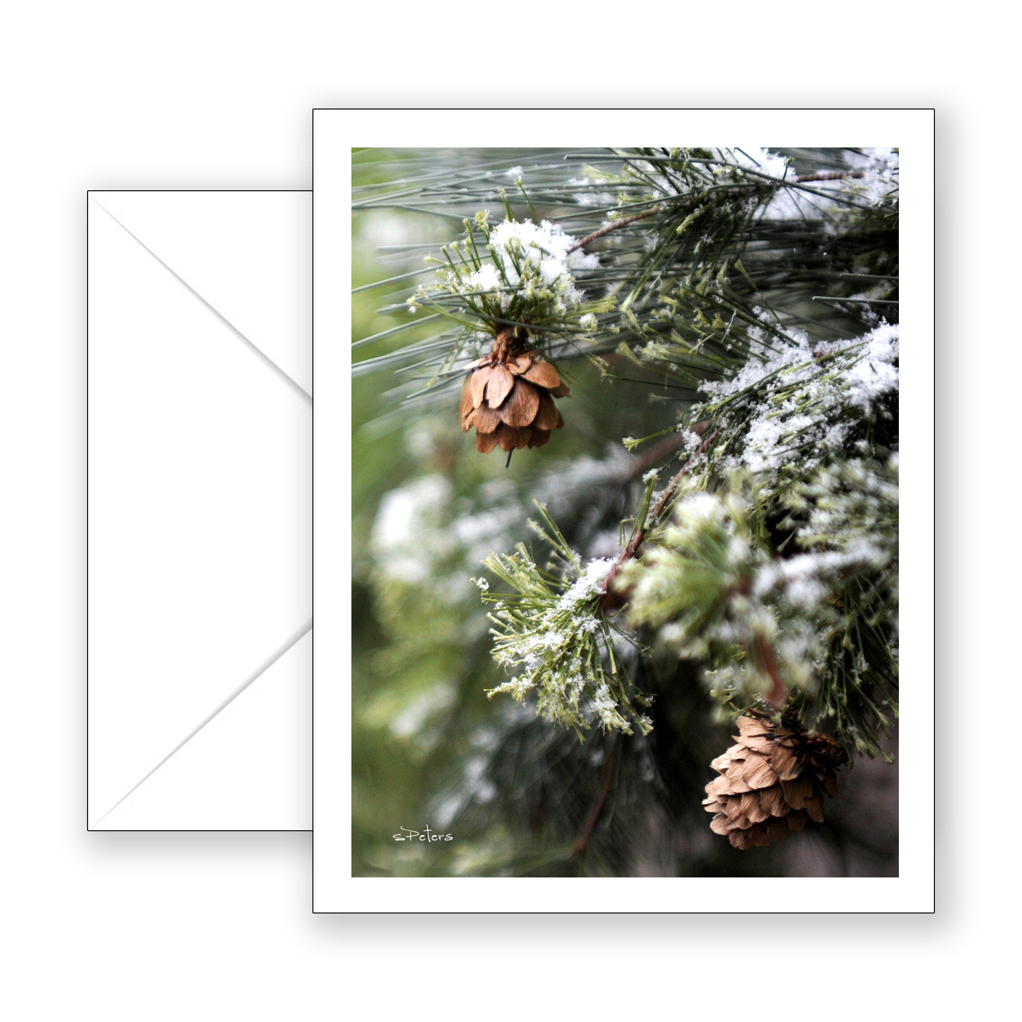 Winter Wonder Notecard