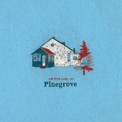 Pinegrove - Amperland, NY album cover