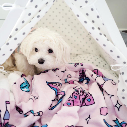 Pet Blanket - Happily Ever After