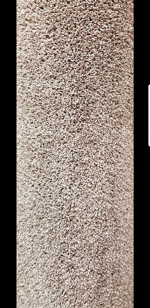 Copy of 12' x 18'3'' SP365 SmartStrand Carpet Remnant