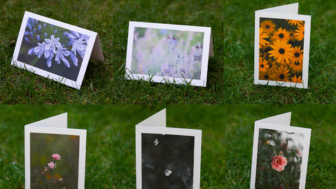 Floral Greeting Cards by GS Creative Photography Gifts