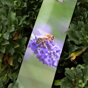 Bee Bookmarks