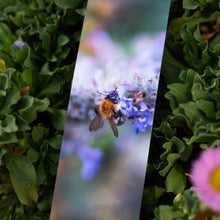 Load image into Gallery viewer, Purple Fantasy Flower Bookmarks