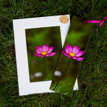 Load image into Gallery viewer, Cosmos Flower Print