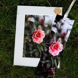 Floral Print & Bookmark Bundles