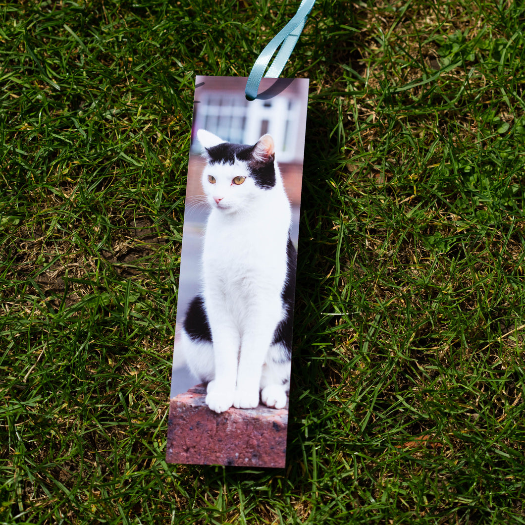 Custom Pet Bookmarks and Prints