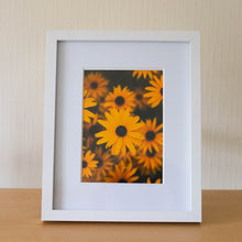 "Load image into Gallery viewer, Framed Flower Prints - 10"" x 8"""