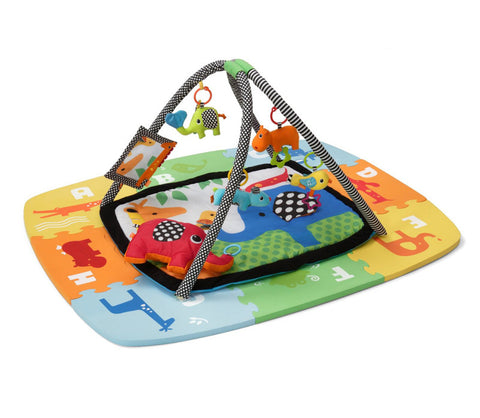 Baby Activity Gym and Mat