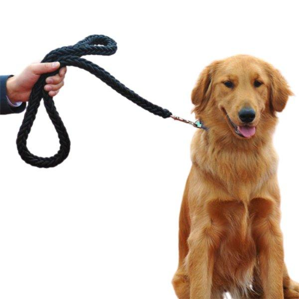 Round Rope Leash Simple-L - Paksa Pk