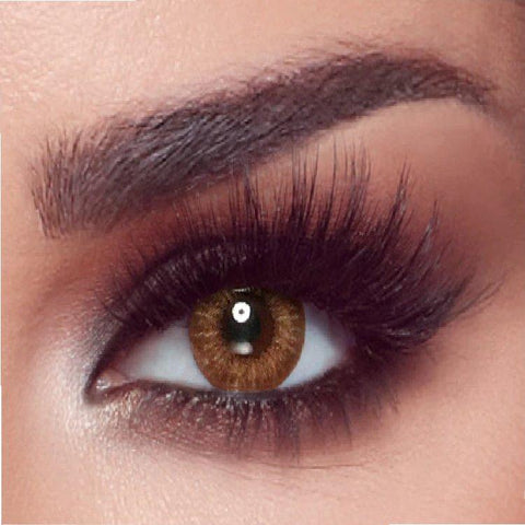Almond Brown Contact Lens - Paksa Pk