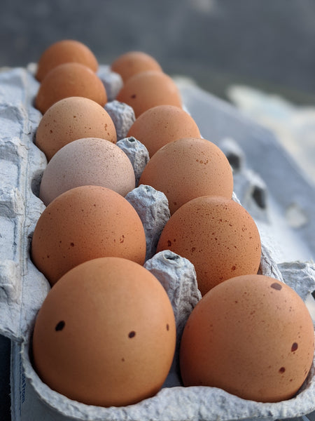 Organic Eggs: Fair and freckled, large