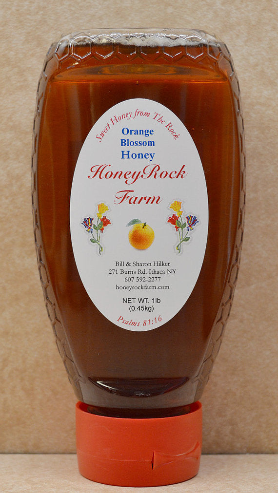 Squeeze Bottle Honey (1lb)