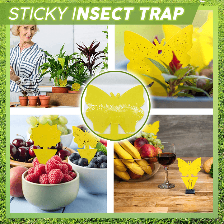 Pest Free Sticky Trap