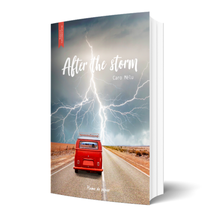 After the Storm - Livre Broché