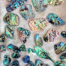 Load image into Gallery viewer, Tumbled Paua shell necklace