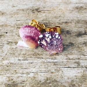 Teeny Tiny Natural Shell Earrings