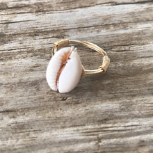 Load image into Gallery viewer, Cowrie Shell Ring