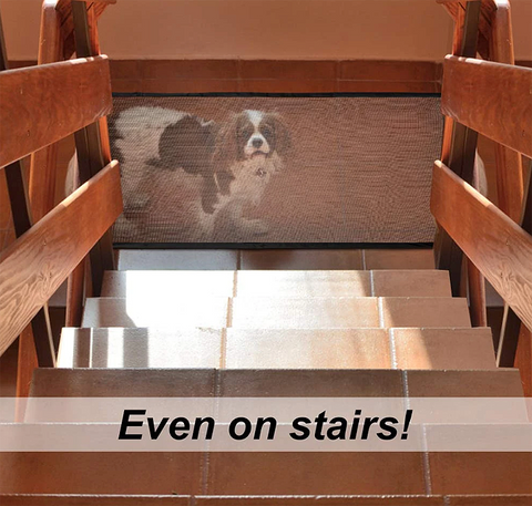 Magic Gate for Dogs Even on Stairs
