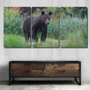 Wild Brown Bear Ursus Arctos Natural 2 - Bear Animals Canvas Art Wall Decor