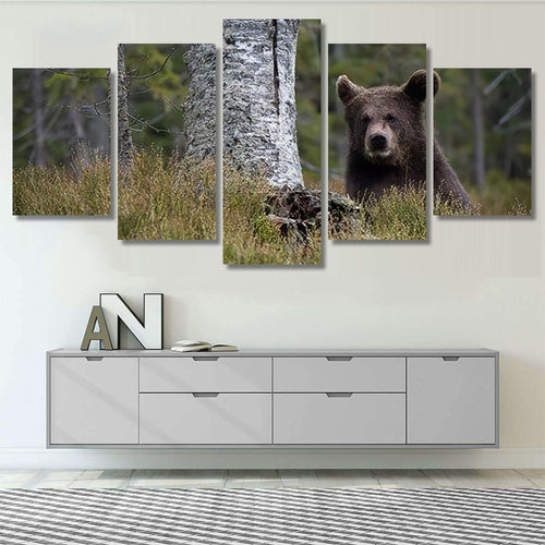Young Broown Bear Ursus Arctos Looking - Bear Animals Canvas Art Wall Decor