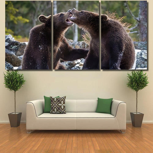 Young Broown Bears Ursus Arctos Looking - Bear Animals Canvas Art Wall Decor