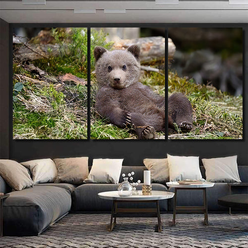 Young Brown Bear Forest Portrait Animal 4 - Bear Animals Canvas Art Wall Decor