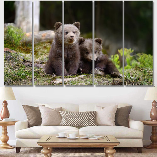 Young Brown Bear Forest Portrait Animal 1 1 - Bear Animals Canvas Art Wall Decor