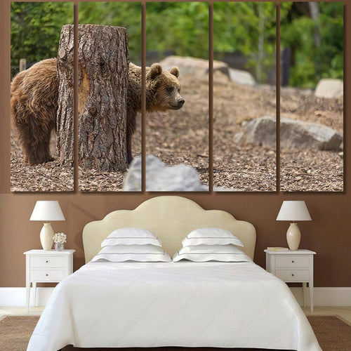Young Brown Grizzly Bear Hiding Behind - Bear Animals Canvas Art Wall Decor