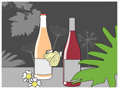 What We Look for In Good Natural Wine
