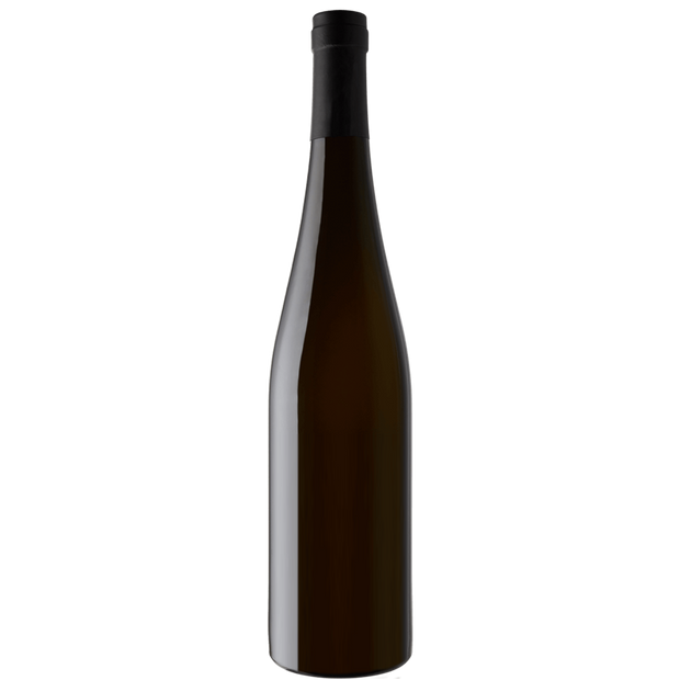 Wittmann Riesling Trocken Estate 2019-Wine-Verve Wine
