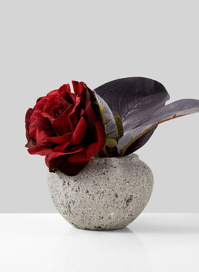 "Serene Spaces Living Decorative Pumice Stone Fishbowl Vase, Unique Lava Rock Container, Measures 3.75"" Tall and 5"" Diameter, Sold Individually and as a Set of 2"